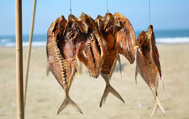 Украинцам рассказали, какую рыбу сейчас нельзя есть: может вызвать серьезные проблемы