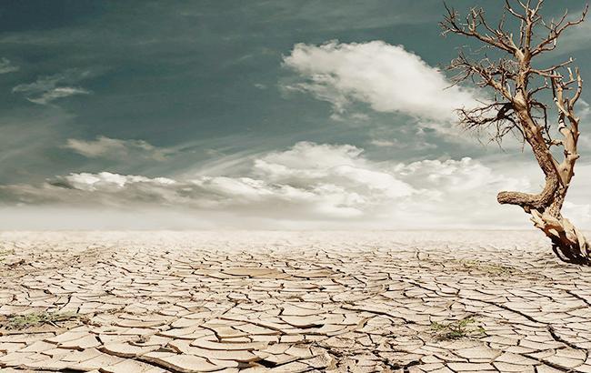 Людство за 7 місяців вичерпало річні ресурси Землі, - WWF