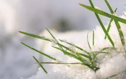 Частину України засипало снігом: з'явилися фото