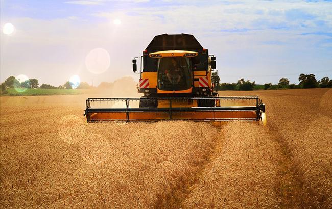 Ukrlandfarming отчиталась о результатах жатвы ранних зерновых культур