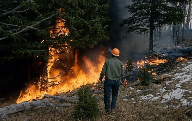 Синоптики попереджають про пожежну небезпеку