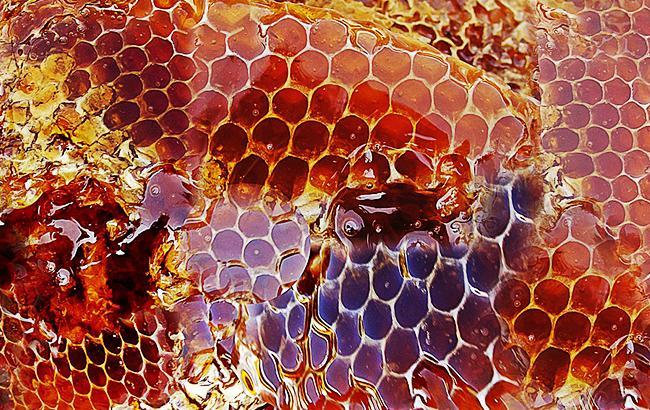 Фото: мед (Pixabey)