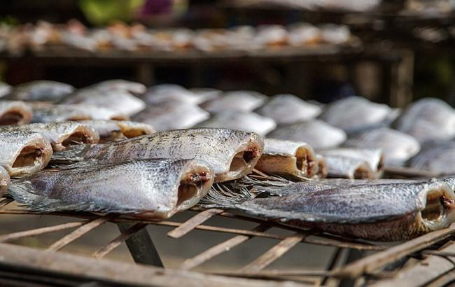 Рибу з ботулізмом постачали водії без санкнижок та без належних умов перевезення