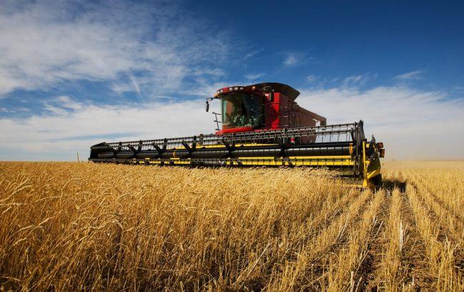 Фото: виробництво зерна в Україні виросло