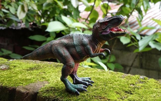 Фото: Динозавр (pixabay.com/gerson_rodriguez)