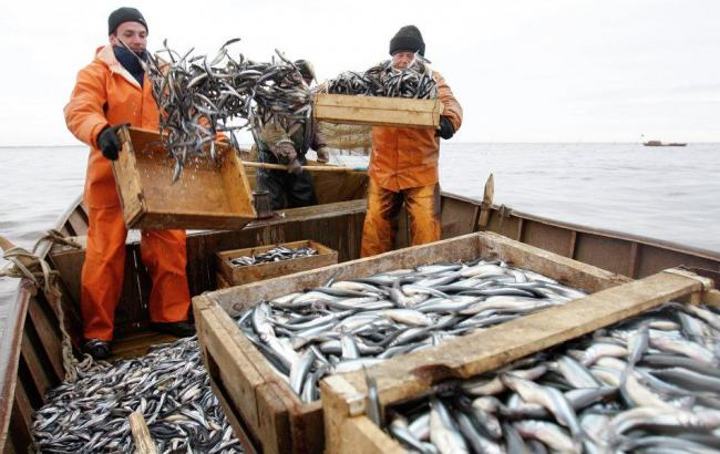 Фото: збір за вилов риби можуть підняти більш ніж в 2,5 рази