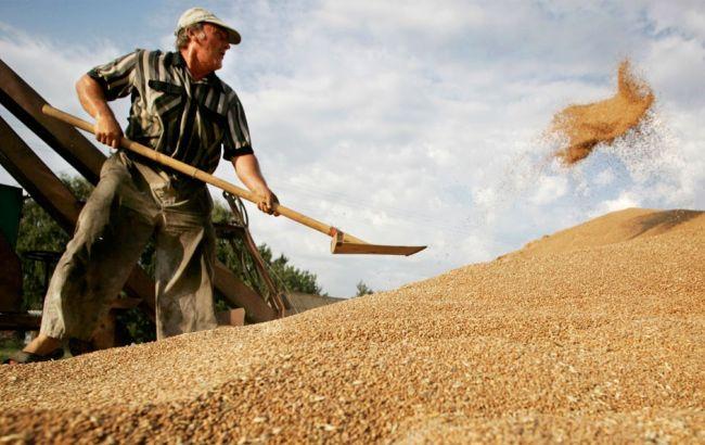 В скандале вокруг Государственной зерновой корпорации проявились новые заинтересованные лица