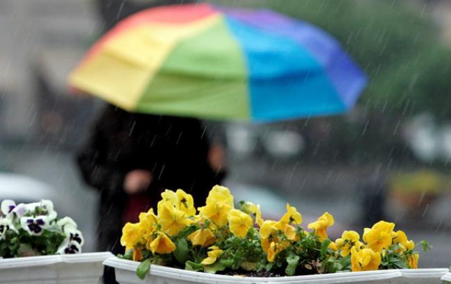Фото: вік-енд обіцяє дощі