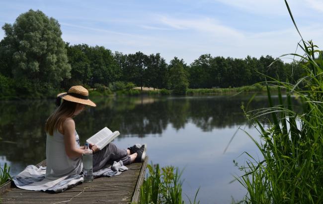 Фото: Книги для отпуска (pixabay.com)