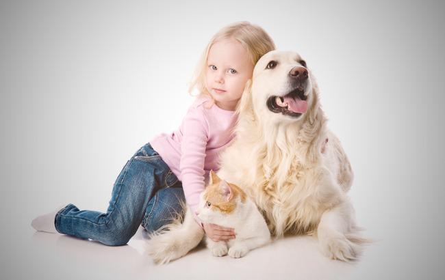 Фото: Собаки и кошки - самые популярные домашние животные (workingmomsagainstguilt.com)
