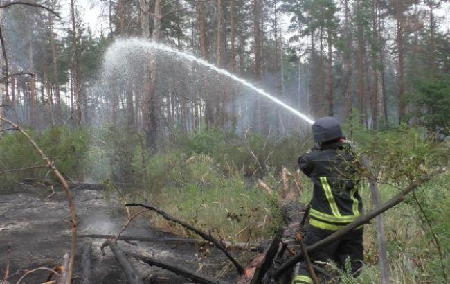 Пожар в заминированном лесу в Луганской областиликвидирован