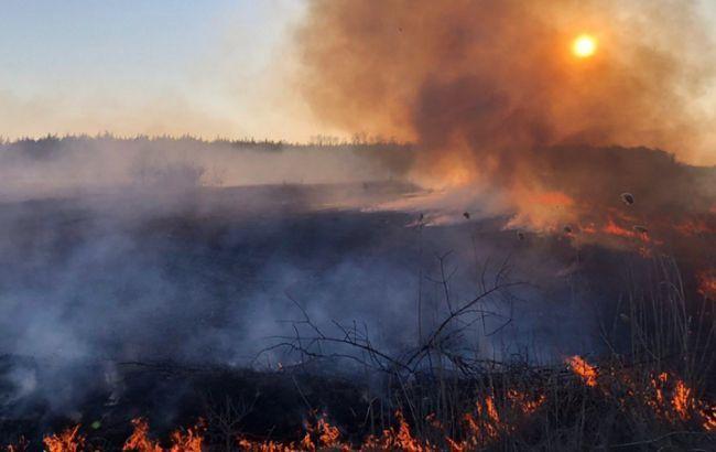 Пожежу в Чорнобильській зоні потушили