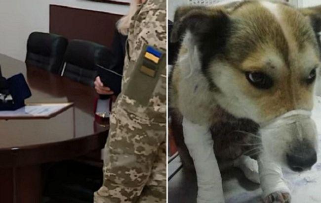 Військовий врятував собаку від чиновника-шкуродера: що вирішили в поліції (відео)