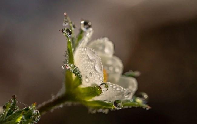 """""""Локальні дощі і грози"""": яка погода очікується у неділю"""