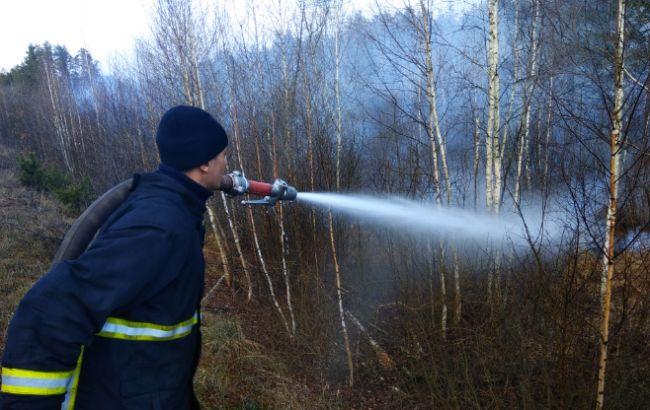 У Житомирській області локалізували всі осередки пожеж