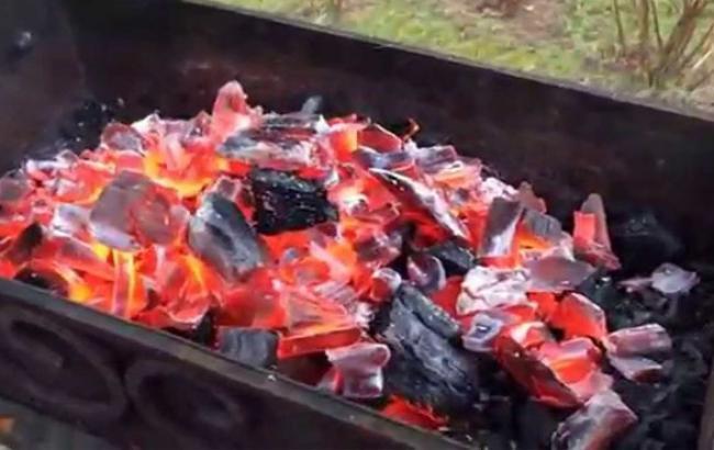 Фото: Древесный уголь для шашлыка (youtube.com)
