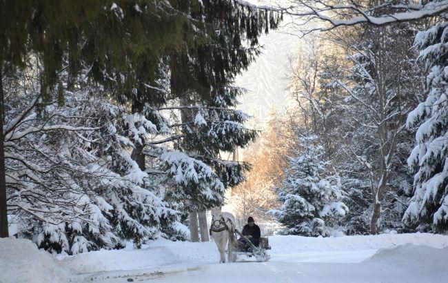 """""""Нарния"""" в Украине: самые красивые фото природных чудес зимой"""