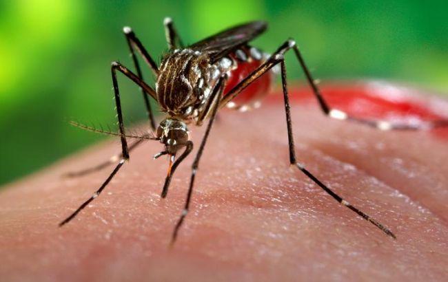 Вирус лихорадки Зика довольно долго живет ворганизме мужчин— Ученые