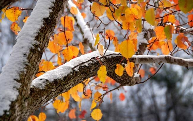 Фото: Снег осенью (riakchr.ru)