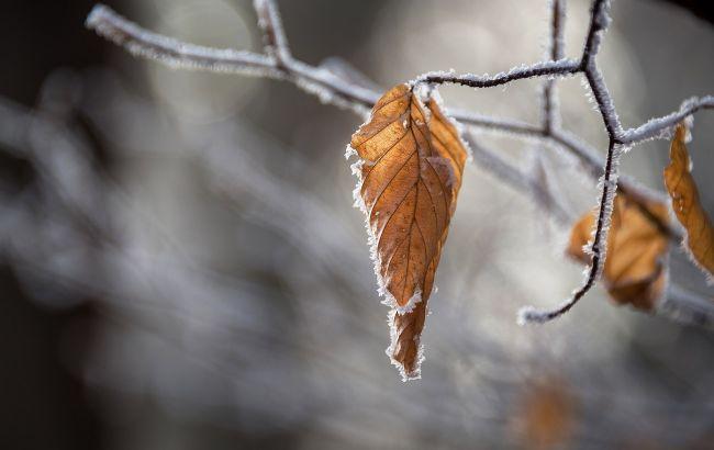 Ударят морозы: каким областям Украины грозит самое сильное похолодание