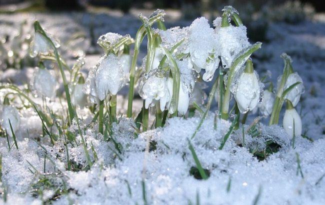 Майже весна: синоптики попередили про аномальне потепління