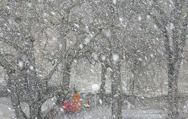 Фото: снегопад (Pixabey)