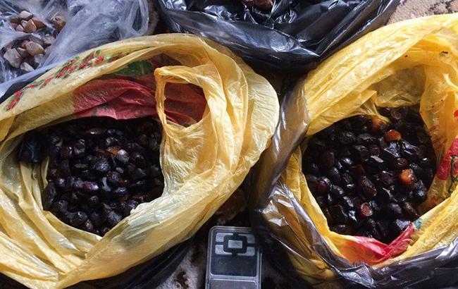 СБУ вилучила понад 3 тонни бурштину у Житомирській області