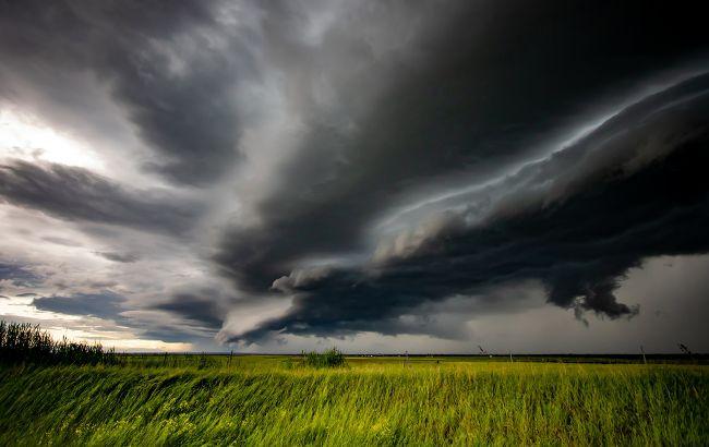 Существенного тепла не ждите: синоптики дали прогноз погоды на Троицу