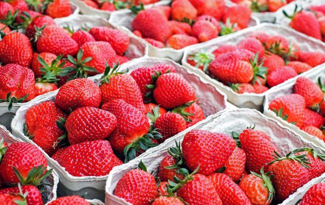 В Україні різко впали ціни на полуницю: скільки коштує у різних регіонах
