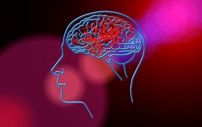 """""""Дивовижний механізм"""": в мережі розповіли, як правильно тренувати мозок"""