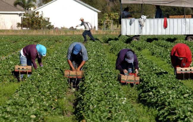 Заробітки на карантині: як змінилась трудова міграція під час епідемії
