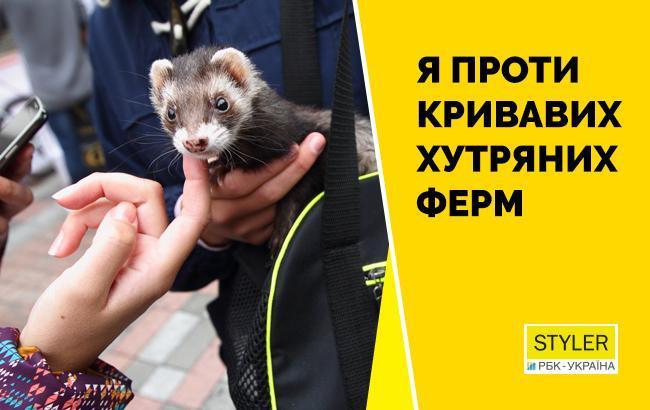 Как в Киеве прошел митинг за запрет производства меха в Украине (коллаж: STYLER)
