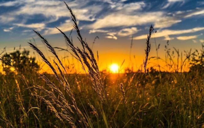 Знову дощі: синоптики дали прогноз на тиждень
