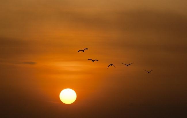 Вчені NASA зафіксували на Сонці велику пляму