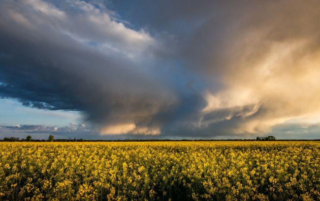 В Украину идет непогода с грозами и сильным ветром