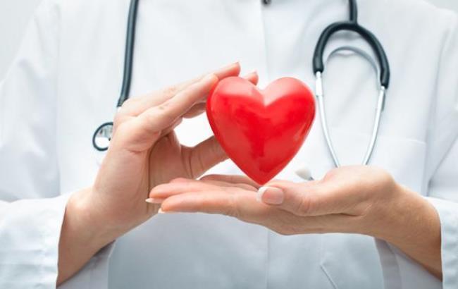Фото: Серце (doctor-israel.ru)
