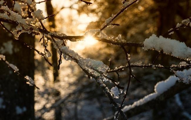 Фото: Стрітення Господнє 15 лютого (pixabay.com/MyriRoet)