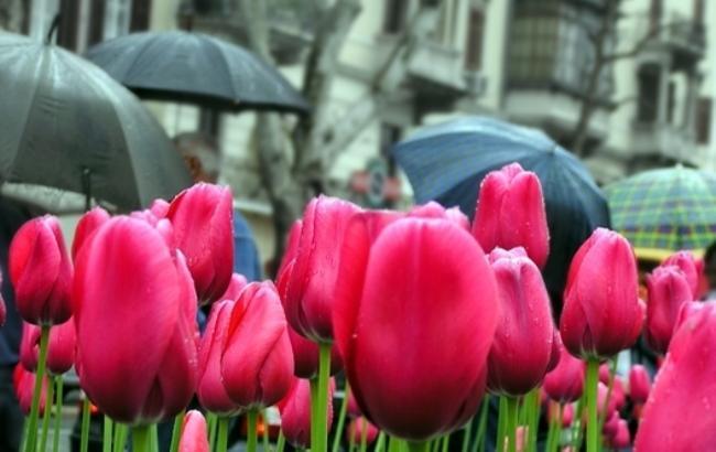 Синоптик дала прогноз погоди на 9 травня