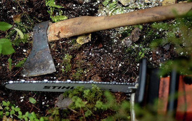 Черного лесоруба убило дерево, коллеги просто закопали тело (фото)