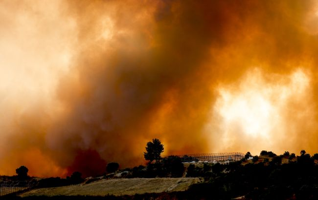 У Эрдогана лесные пожары в Турции назвали национальным бедствием