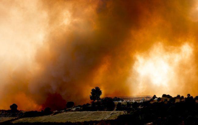 У Туреччині затримали підозрюваного в підпалах лісів на півдні країни