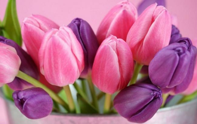 Фото: Пожелания на 8 марта (look.com.ua)
