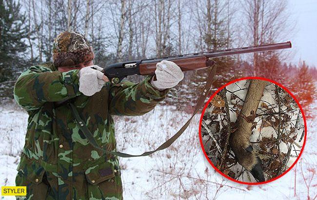 Немає гірше звіра, ніж людина: браконьєри жорстоко вбили вагітну самку лося (фото)
