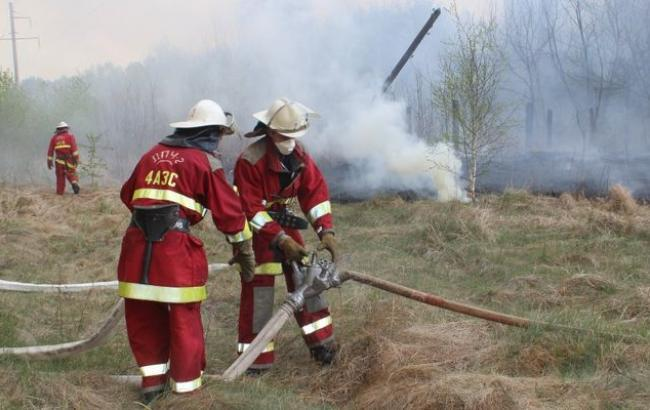 В Чернобыле горит 130 га сухой травы, - ГСЧС