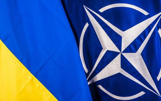 """У НАТО заявили, що """"вибори"""" на Донбасі суперечать мінськими угодами"""