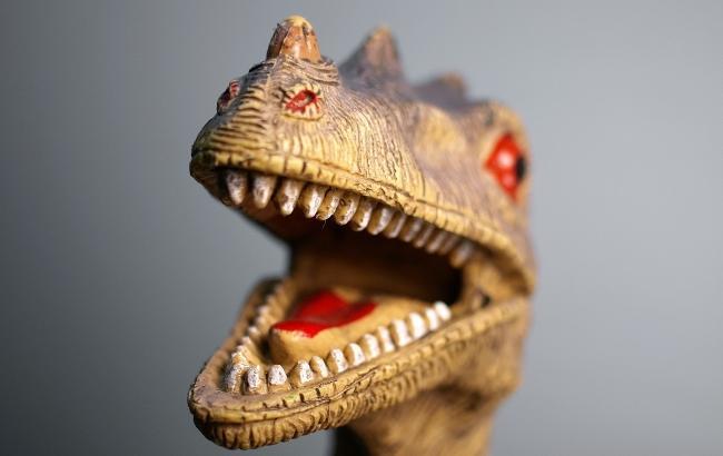 Фото: Динозавр (unsplash.com/Umanoide)