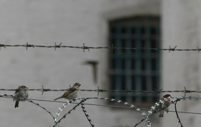 В Україні понад 56 тис. засуджених та узятих під варту