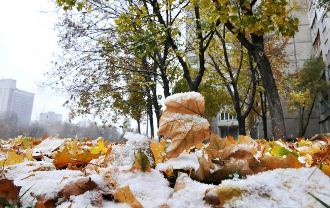 Фото: снег (УНИАН)