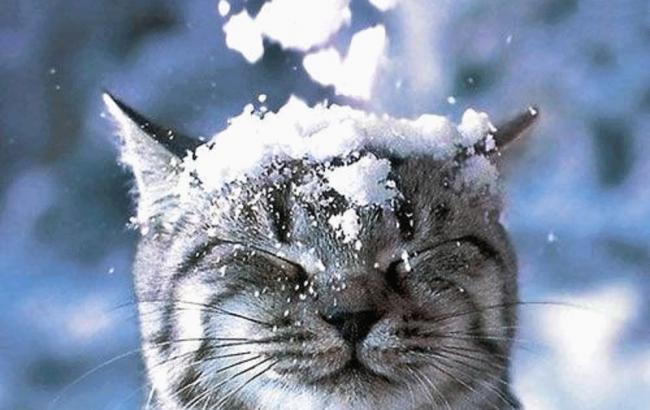 Фото: Українцям слід готуватися до зими (siviy.snimka.bg)