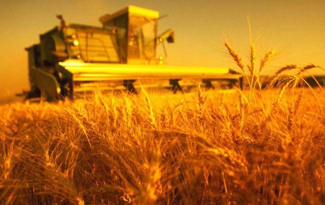 Рекордний експорт зернових експерти аграрної галузі пов'язують із багатим врожаєм